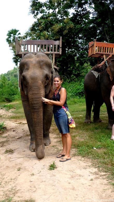 Laos Elephant Riding